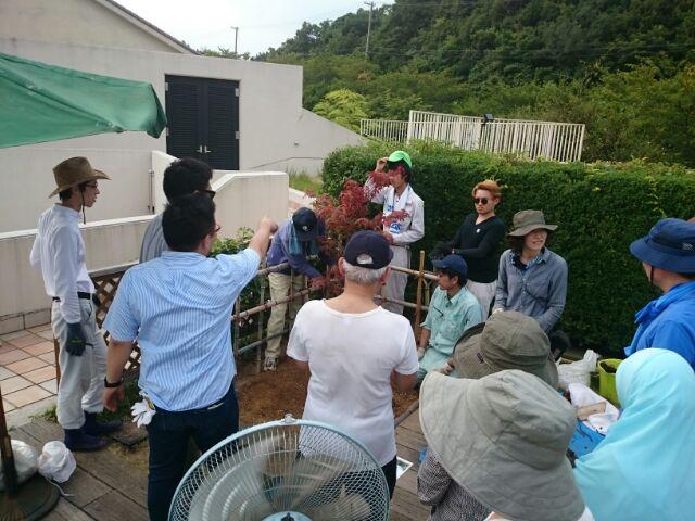 8.ノムラモミジ配置検討
